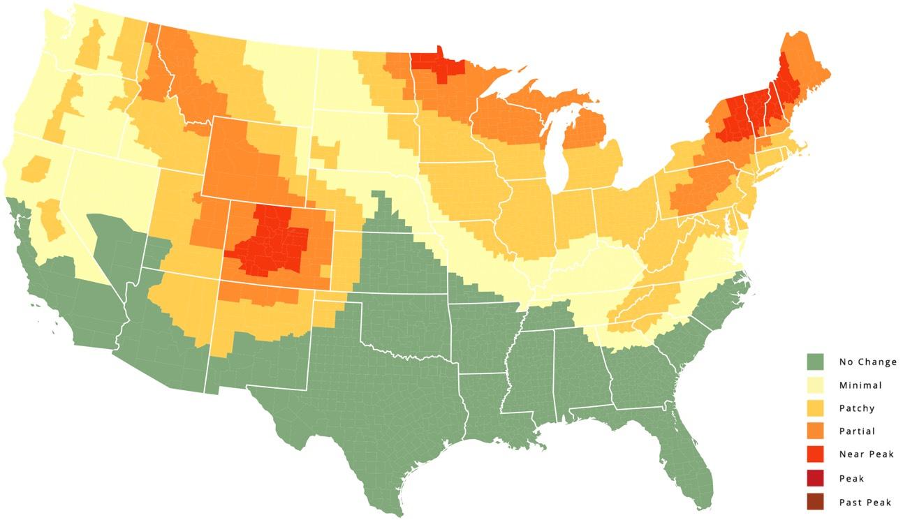 Foliage Map 2016