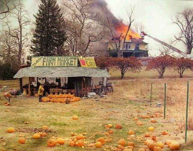 Joel Sternfeld Fire