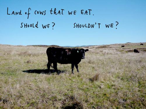 Kalman cows