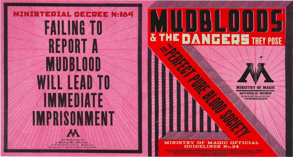 Mudblood Dangers