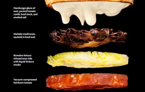 Myhrvold burger