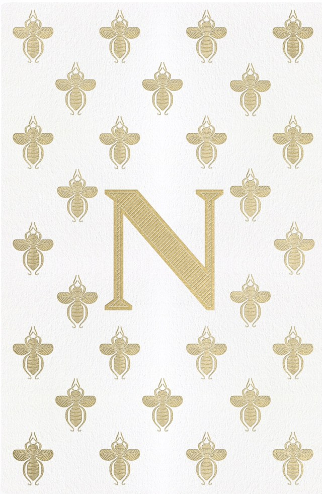 Napoleon The Great Book Cover