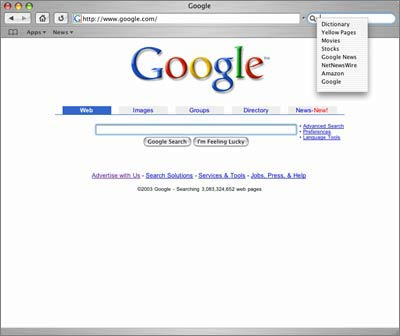 Extending Safari's Google search box