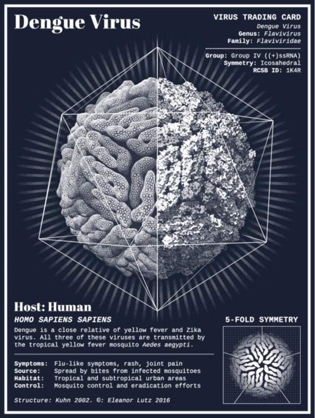 Virus Trading Cards